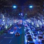 表参道のイルミネーション夜景