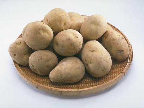 ジャガイモの保存方法