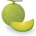 melon01-001