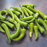 1200px-Banana_Peppers_20120903