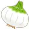 vegetable_shintamanegi