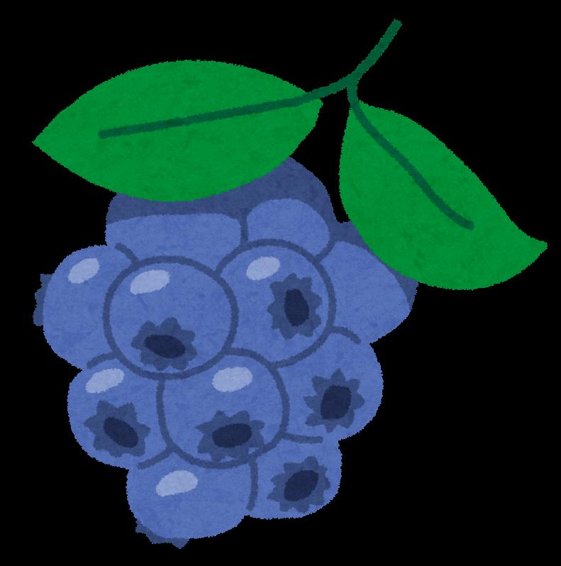 fruit_blueberry