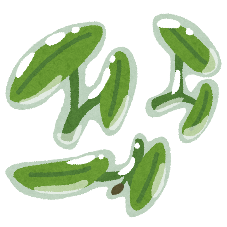 vegetable_junsai