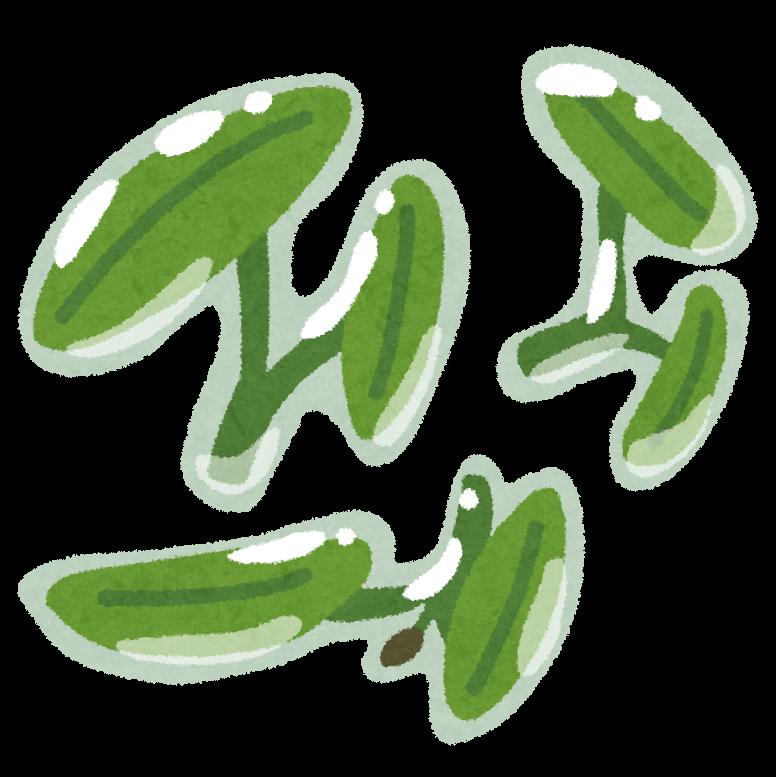 vegetable_junsai