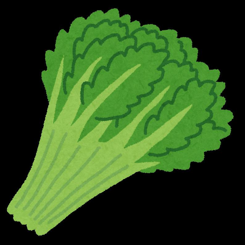 vegetable_syungiku