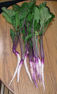 220px-日野菜