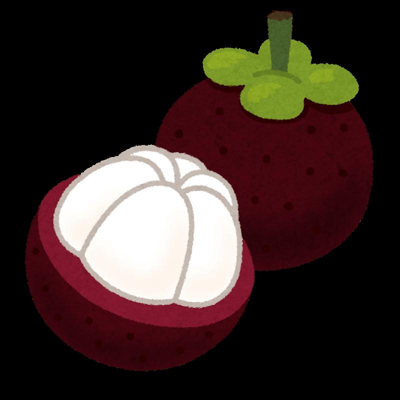 fruit_mangosteen