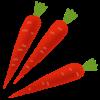 vegetable_kyouyasai_kintoki_ninjin