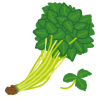 vegetable_mitsuba