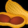 peanut01_b_01