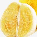 pngtree-grapefruit-png-clipart_643617