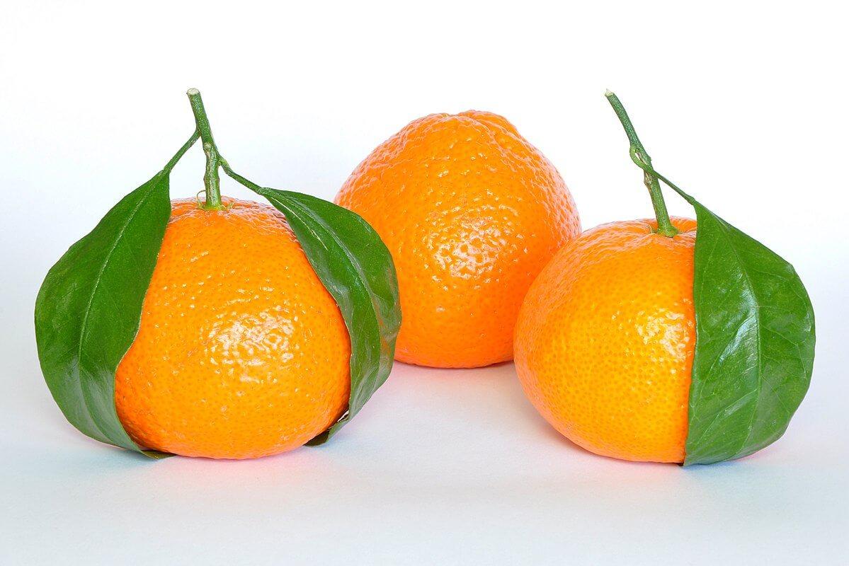 1200px-Mandarin_Oranges_(Citrus_Reticulata)