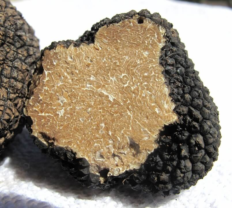 truffle-203031_960_720