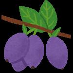 fruit_haskap_hasukappu
