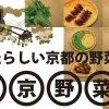 img-sinkyoyasai-02-r